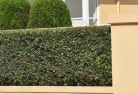 Aubin Grove Privacy screens 30